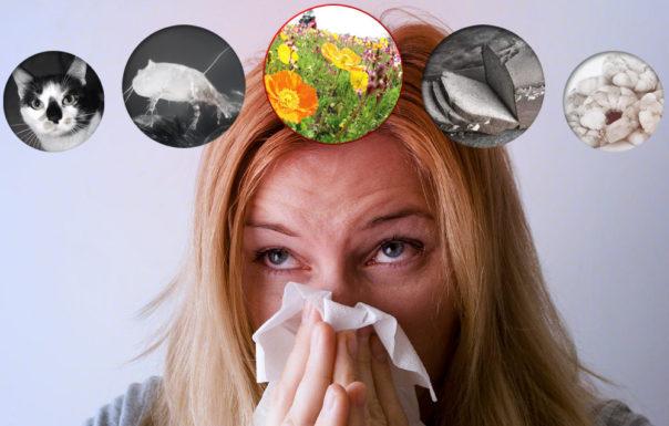 l'hypnose aide le système immunitaire face aux allergies